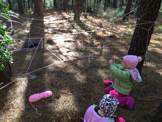 Tadpoles 2017-18: Week 8 - Tea & Forest Webs