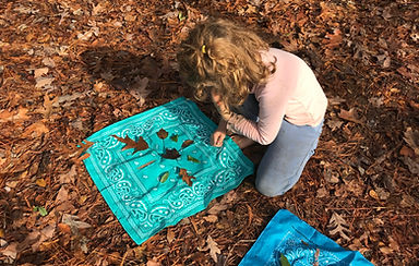 Homeschool participant playing Plant Pattern Game