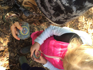 Gray Squirrels 2017-2018: Week 16 -Salamanders and Compass Explorations