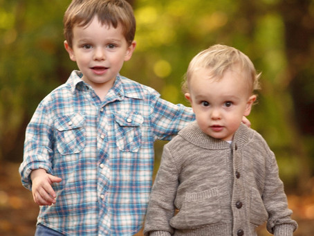What is a Child Protection Trust?