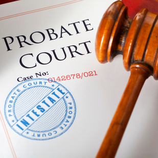 Probate Court Advocacy