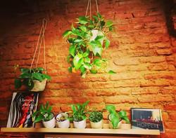 We ❤ vegetal! #urbanjungle #vegetal #gre