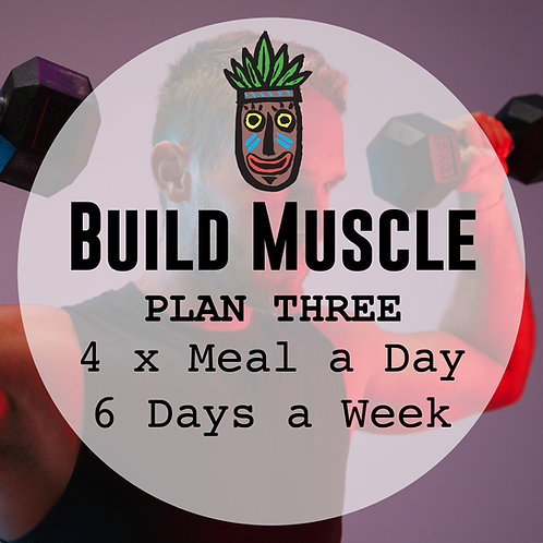 Build Muscle Plan 3