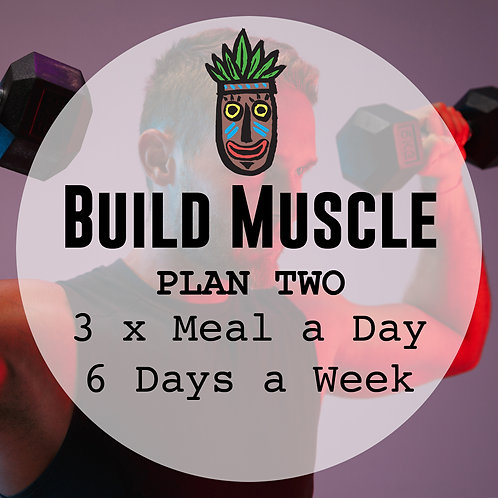 Build Muscle Plan 2