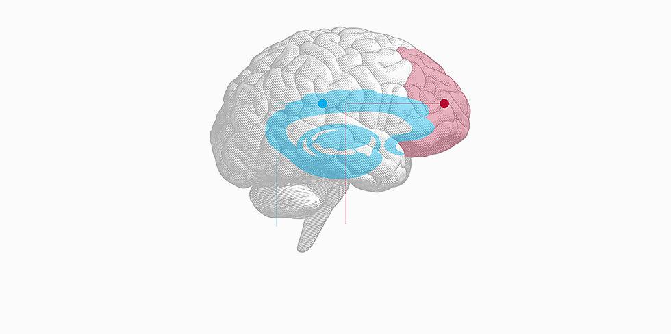 business-2-brain.jpg