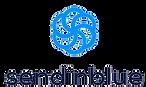 sendinblue-logo-2.png