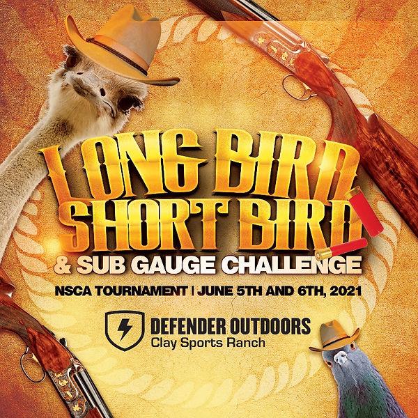 long bird.jpg
