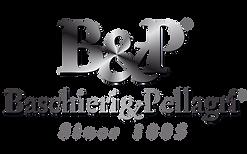 logo_BeP_en.png