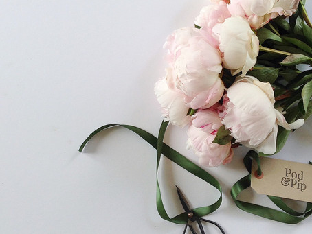 How to get the best from your peonies