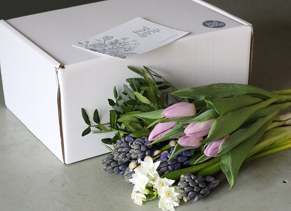 Spring Bloom Box (includes p&p)