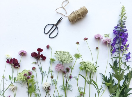 How to care for cut flowers in the hot weather