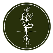 seed_thorns_icon.png