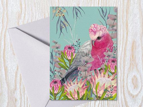 Australian Galah - Greeting Card
