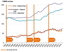 2020-Market-Evolution of domestic prices