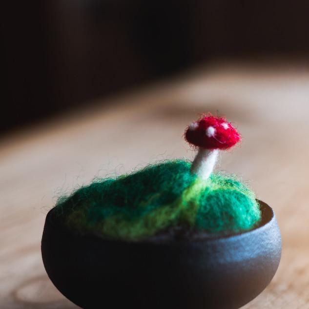 Mushroom moss 2.jpg