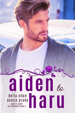 Aiden to Haru The Brothers Book 2 mm gay harem romance book novel boys love bl yaoi author bella chan alexia praks alexia x hot handsome man