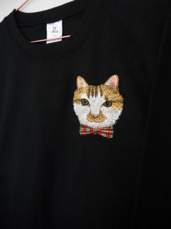 harold cat 5.jpg