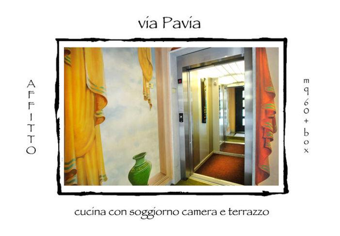 w AA presenta pavia.jpeg