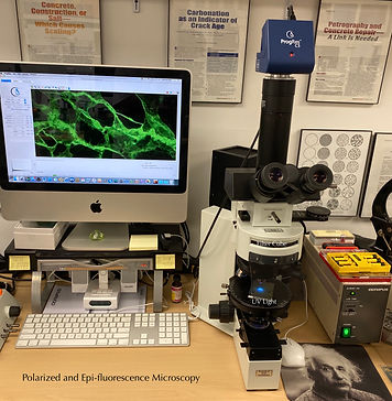 Fluorescence Microscopy in Olympus BX40.
