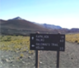 Halemau'u Trail (Maui, HI) .png