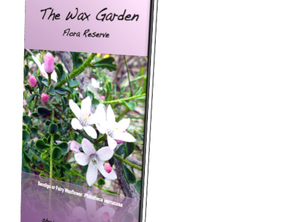 St Arnaud Wax Garden Tour