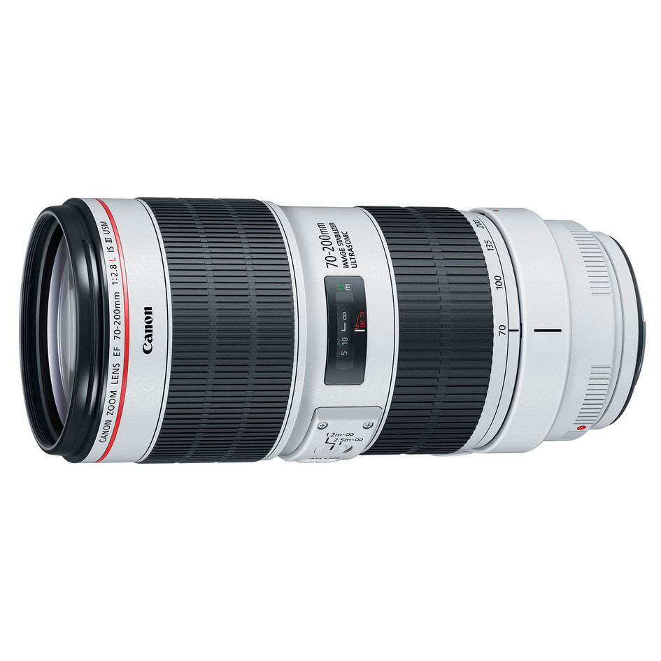 Canon 70-200mm Mark III