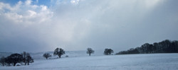 Winter White Over