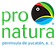 Logo_PPY_FondoTransparente[15974].png