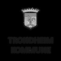 Trondheim logo vertikal (1)_edited.png