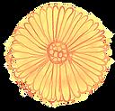 flower-simple_edited.png