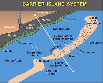 barrier island.jpg