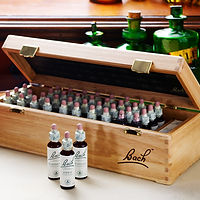 Bach_Original_Flower_Remedies_Wooden_Box