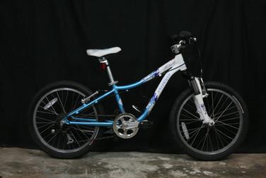 #954 Specialized 20in