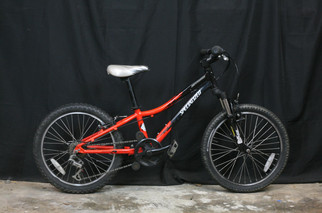 163 Specialized 20in