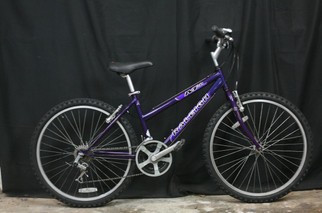 #198 Raleigh M20