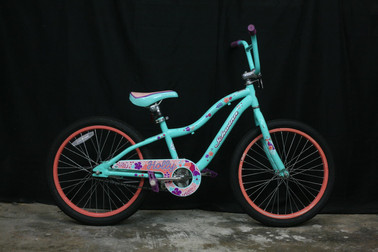 #902 Schwinn Holly