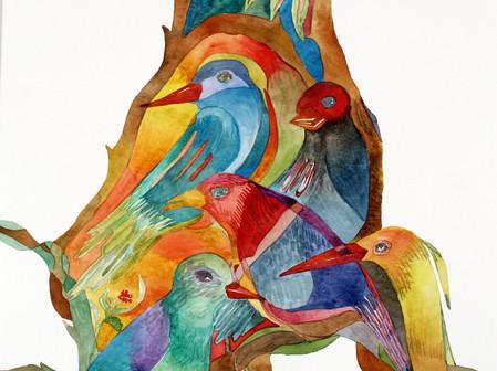 Passaros Tropicais 3 | Tropical Birds 3