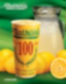 menu-lemonade.jpg