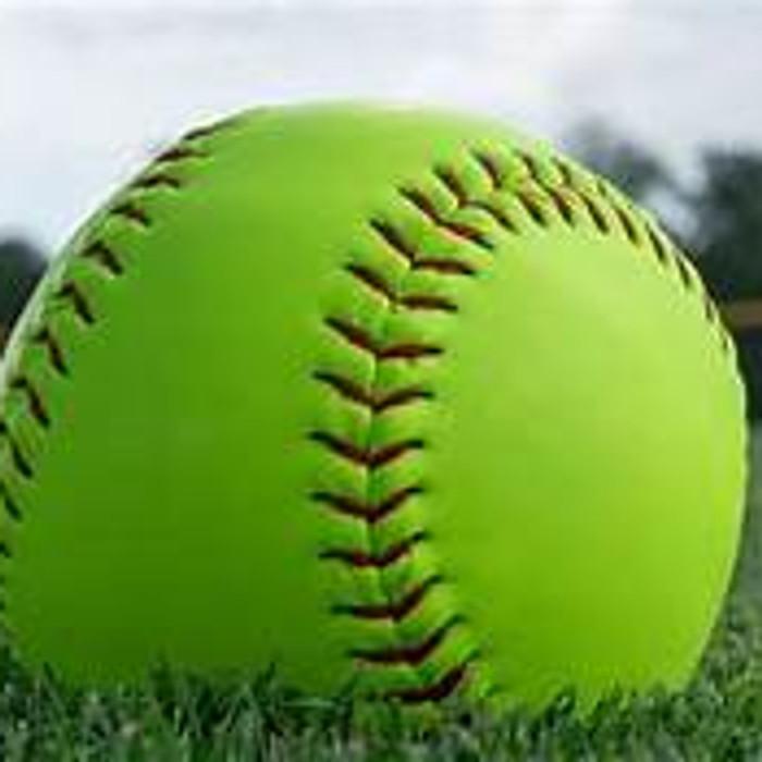 Girls Fast Pitch Softball Camp
