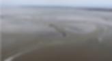 Schermafbeelding 2019-04-10 om 16.19.49.