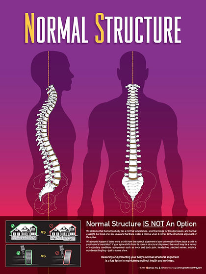 Normal Spine Structure Waupaca Wisconsin Chiropractor