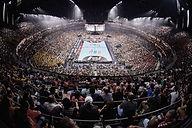 Handball Photo Treatment_0068_Arena insi
