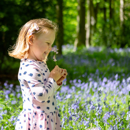 Bluebell Mini-sessions