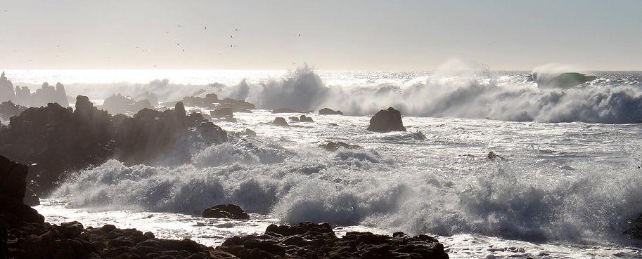 Monterey Bay, California, photo by Yulia Dotsenko.