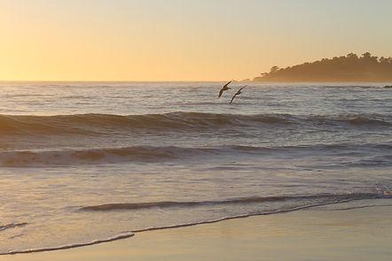Monterey Bay, California, ocean, photo by Yulia Dotsenko.