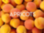 Apricots.png