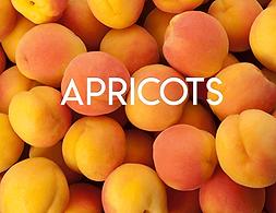 Apricots.png