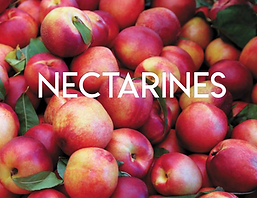 Nectarines.png