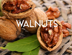 Walnuts.png