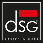 DSG.png